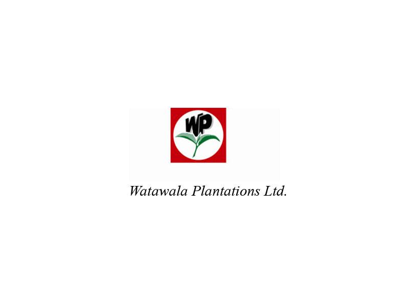 Watawala Plantations