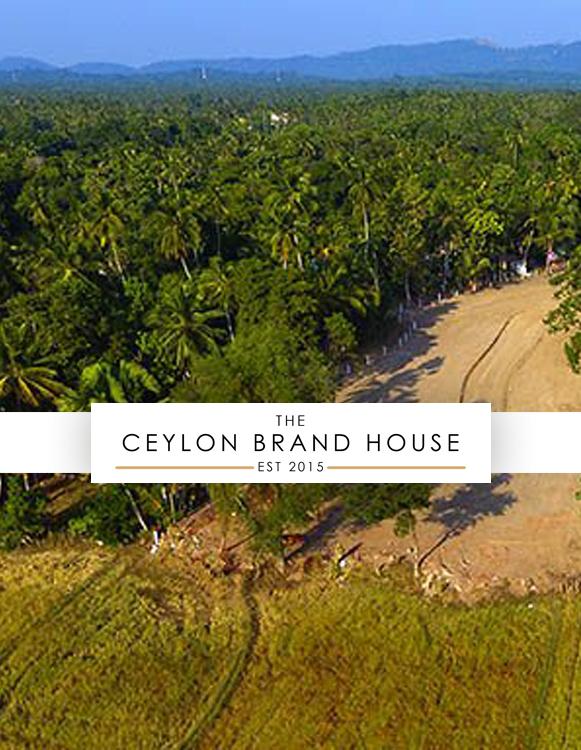 Ceylon brand house